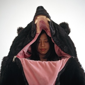 Great Bear Sleeping Bag